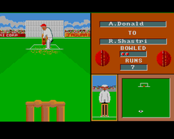 Cricket Crazy Amiga Public Domain Screen Shot